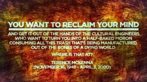 reclaim your mind