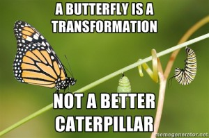 butterfly is a transformation